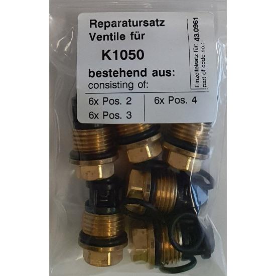 430961  Repair Kit Valves
